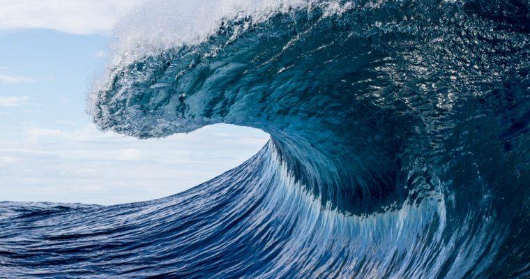 ripple $1 2017