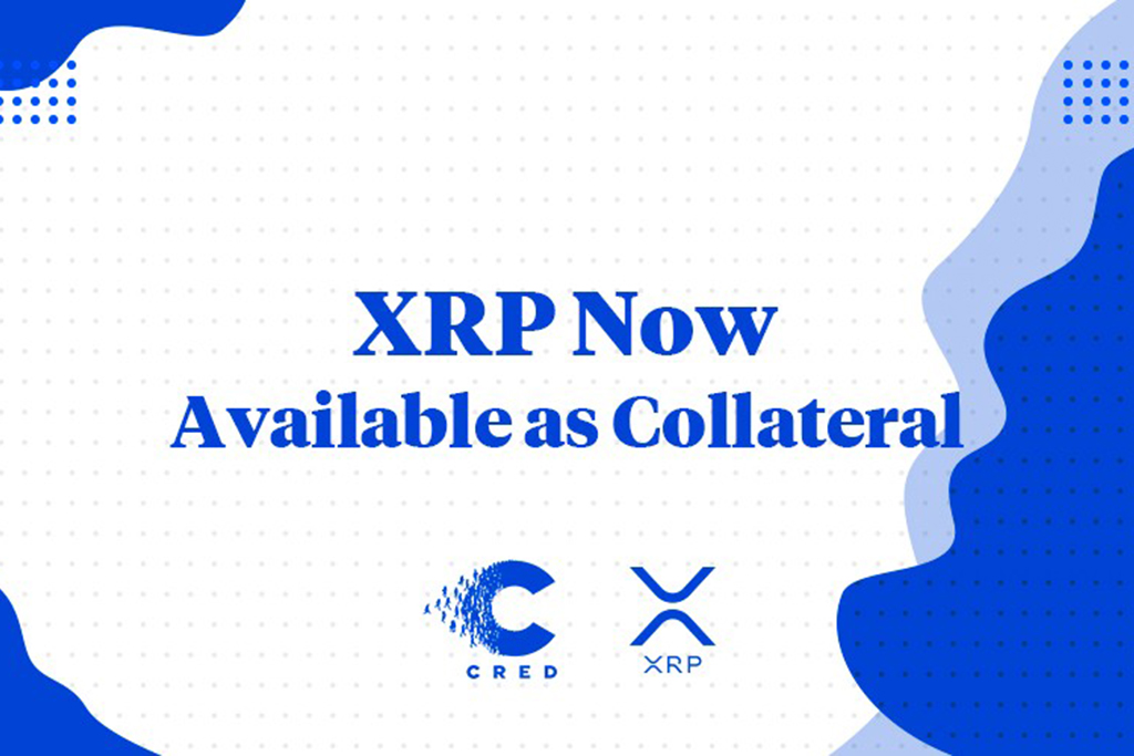 ripple xrp cred