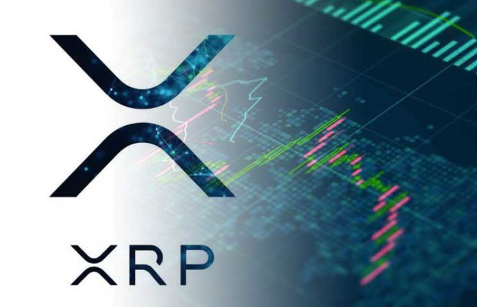 XRP Price Analysis 19